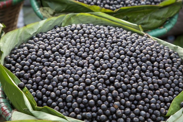 Manfaat Acai Berries, Superfood yang Kaya Antioksidan